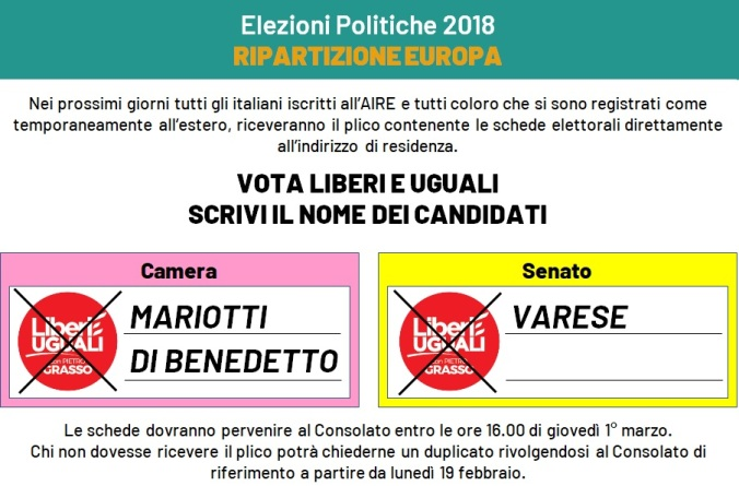 Infografica voto